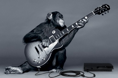 Anyone Can Play Guitar Monkey Playing Cool